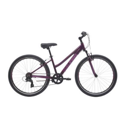 Raleigh Allure 27.1 Women's MTB Mountain Bike